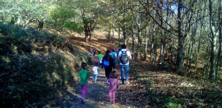 Excursiones por el bosque en familia