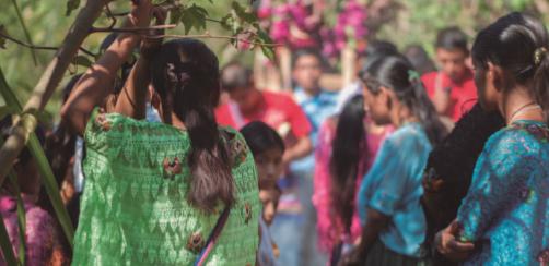 Defensoras chiapanecas alzando  la voz frente a conflictos  eco-territoriales