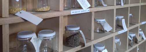 Visita al archivo de semillas Haziera