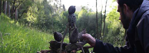 Arte efímero en la naturaleza