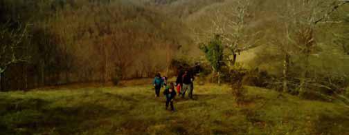 Excursiones por el bosque