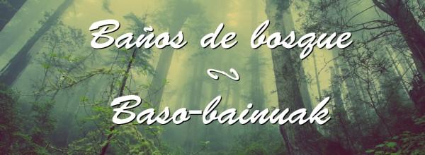 Baños de bosque Cristina Enea Fundazioa